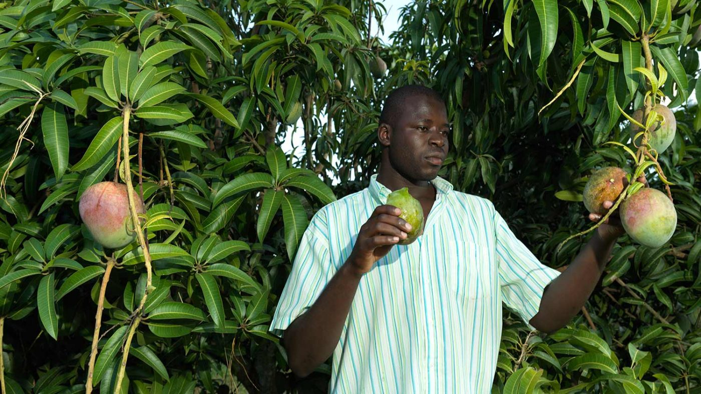 Atugonza at his home, standing underneath a fruit tree.