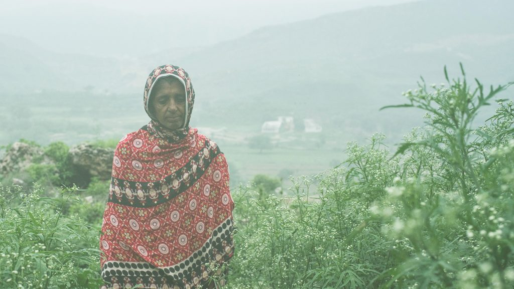 Kausar stands on the hillside in fog.