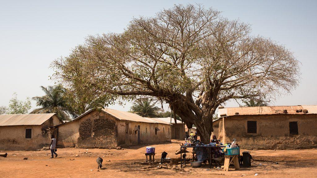 A woman sitting under a tree in Yendi, a village in Ghana.