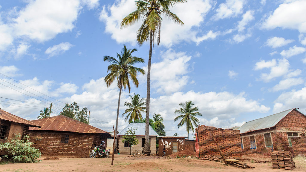 A remote village in Tanzania, featuring towering palm trees and several buildings built from mud bricks.