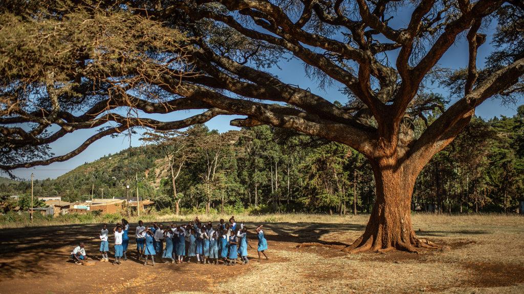 School children sing songs under an acacia tree outside their school in Kenya.