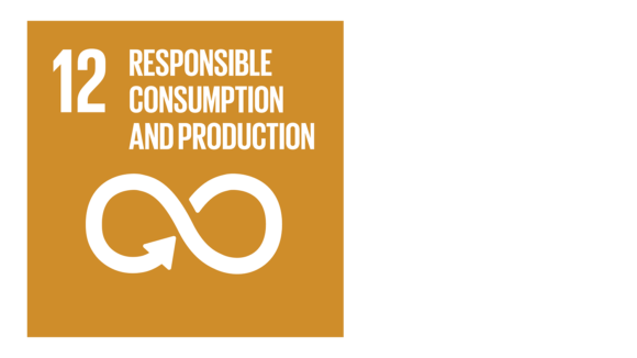 A yellow icon with an image of an infinite loop and the text '12: Responsible consumption and production'.