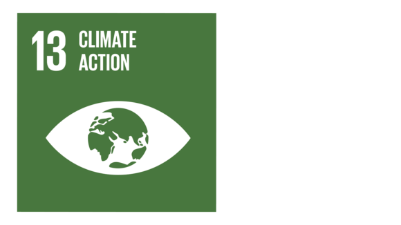 A green icon with an image of a globe and the text '13: Climate action'.