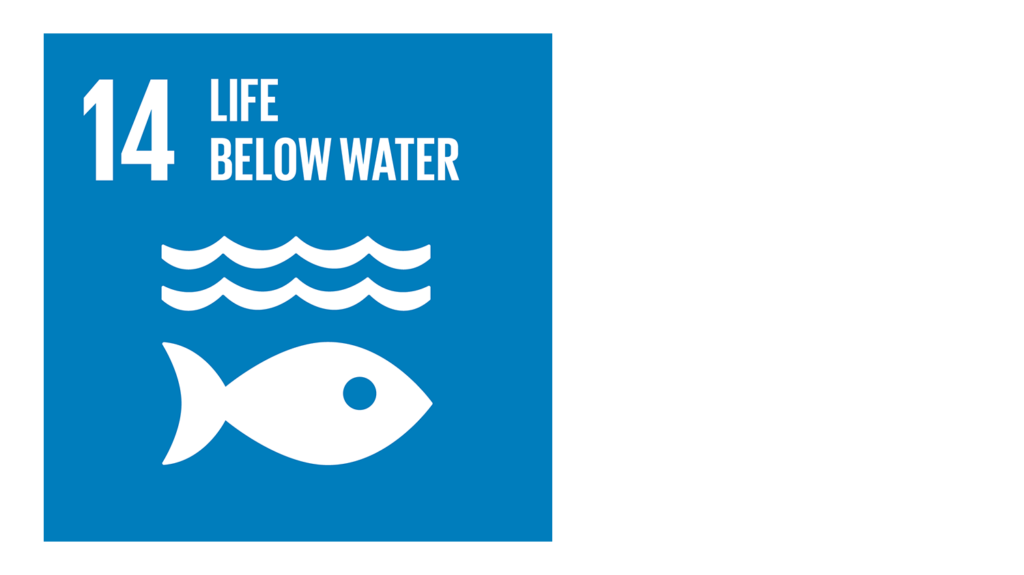 A blue icon with an image of a fish and the text '14: Life below water'.