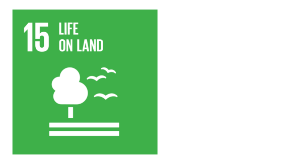 A greenicon with an image of a tree and the text '15: Life on land'.