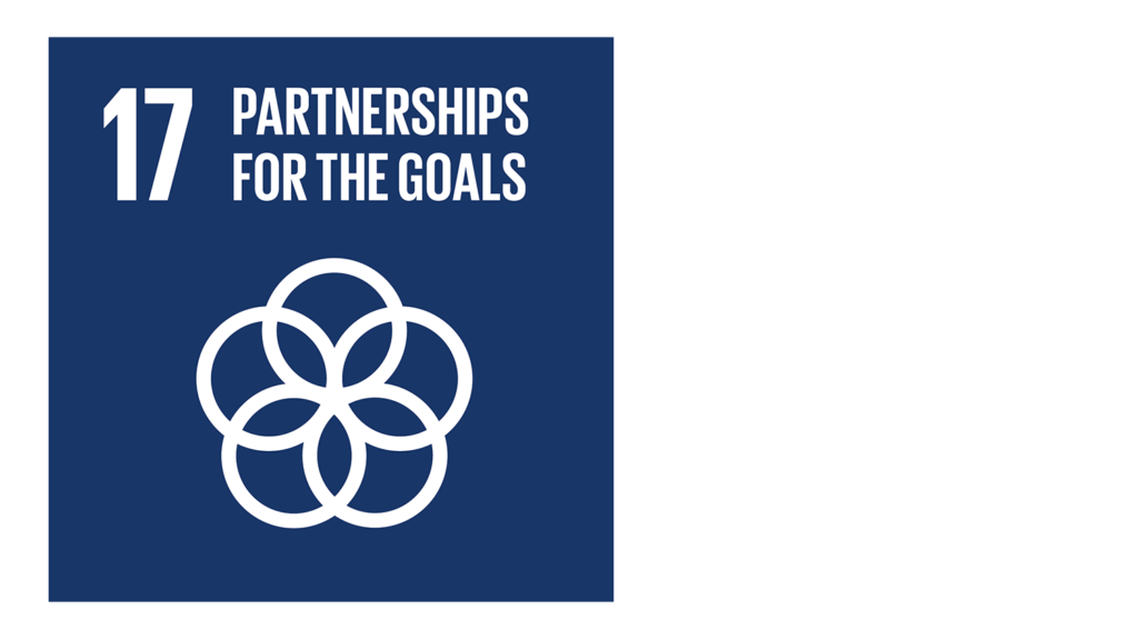 A blue icon with an image of interlinked circles and the text '17: Pasrtnership for the goals'.