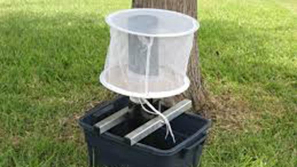 A mosquito gravid trap