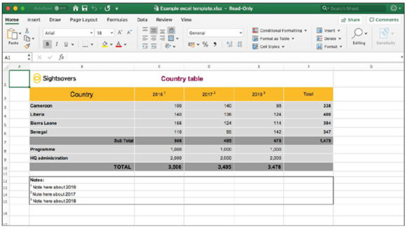An example of a Sightsavers-branded Excel document, featuring a table with a yellow header and grey rows.