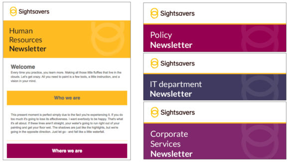 Examples of Sightsavers internal emails, with the headings 'Human resources newsletter', 'Policy newsletter', 'IT department newsletter', 'Corporate services newsletter'.