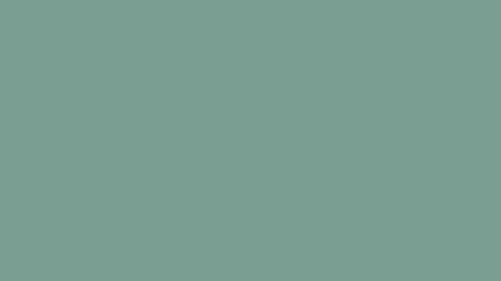 A colour swatch showing Sightsavers Mint brand colour.