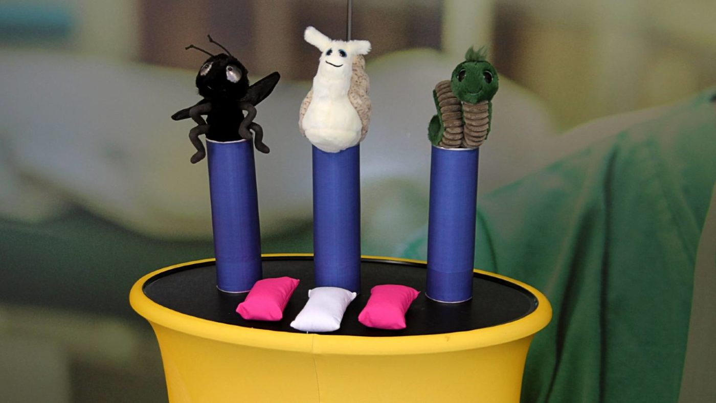 A plush toy fly, snail, and worm are set up in a coconut-shy styled 'elimination' game,