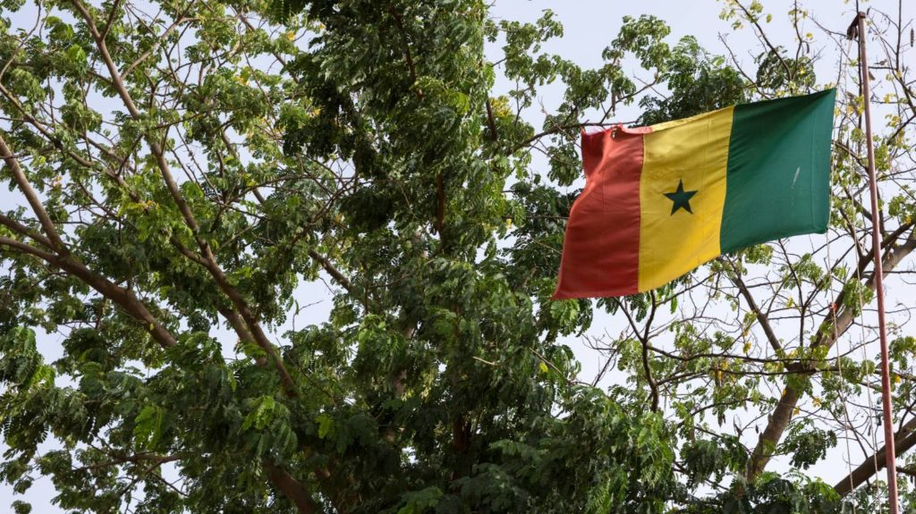Senegal flag flying in front of trees