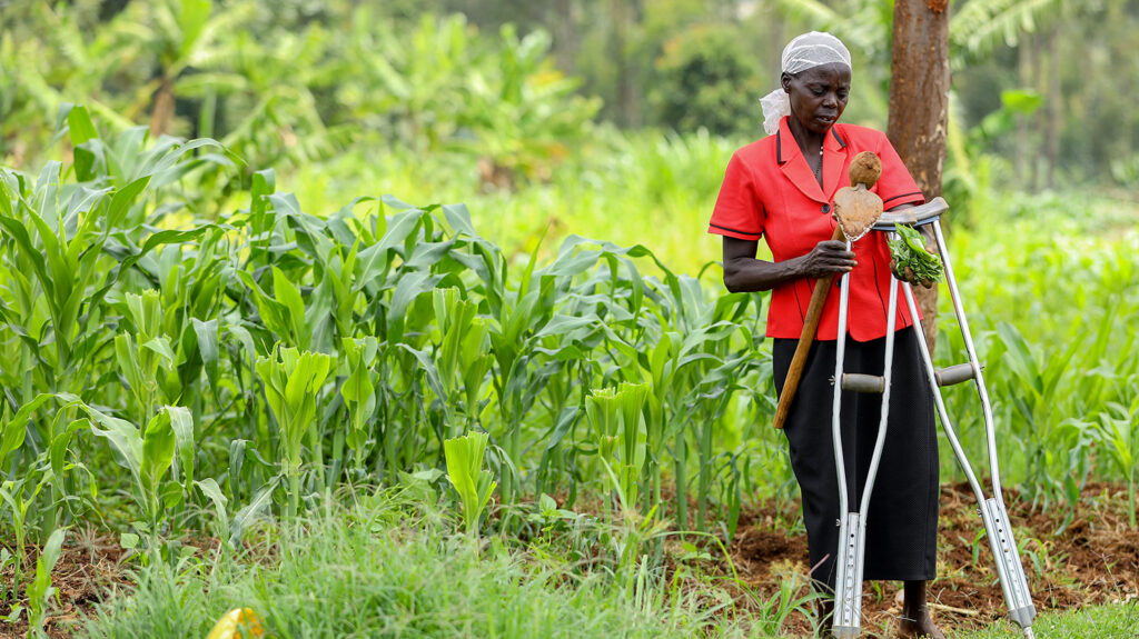 Jeniffer Atieno Opito tends to her crops.