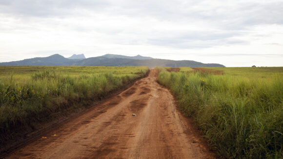A landscape in rural Cameroon, showing a dirt road surrounded by tall grass with mountains in the background.